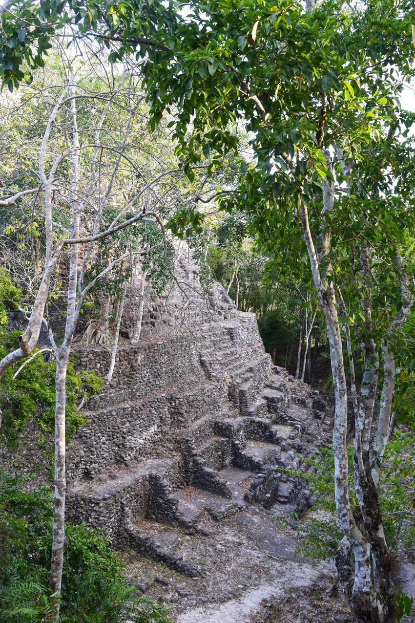 The temple of La Danta is the tallest of the Mayan period, at 72m high.